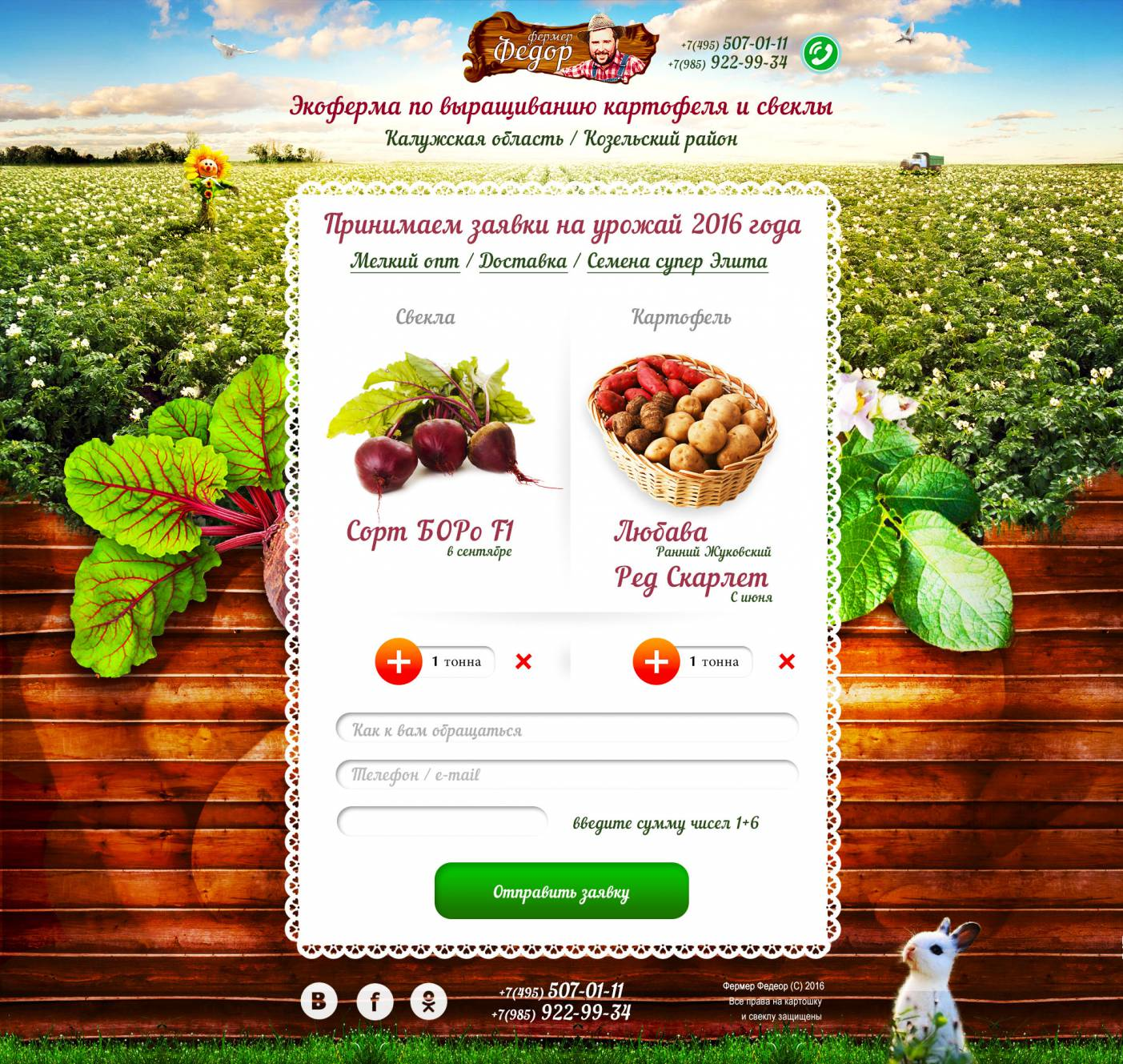Development of a landing page for an agro-industrial farm